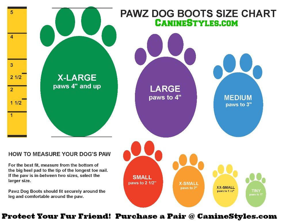Pawz Black Dog Boots Size Chart How To Know Which Size Your Dog