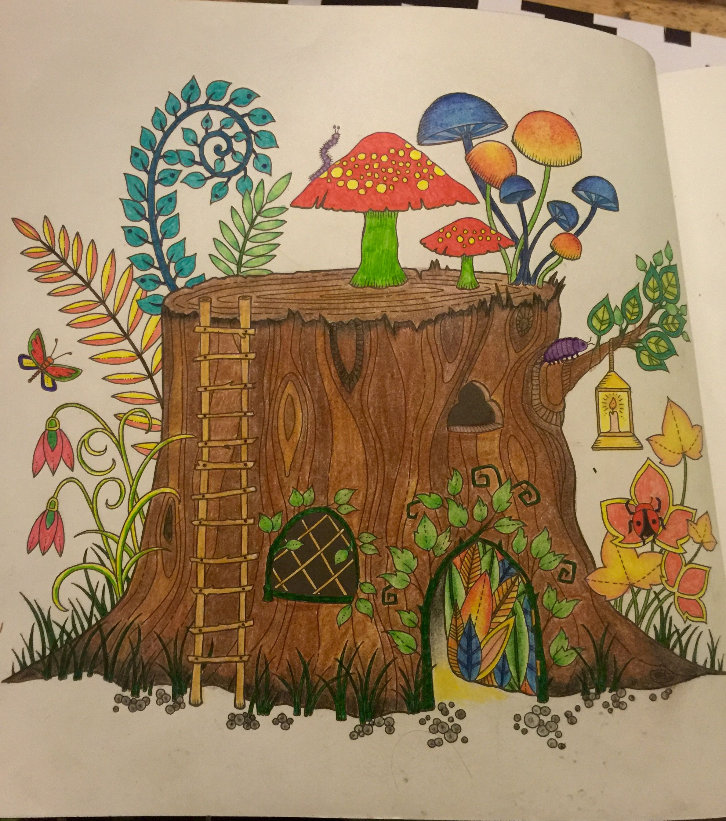 Enchanted forest coloring book website - Tree Stump Enchanted Forest Coloring Book