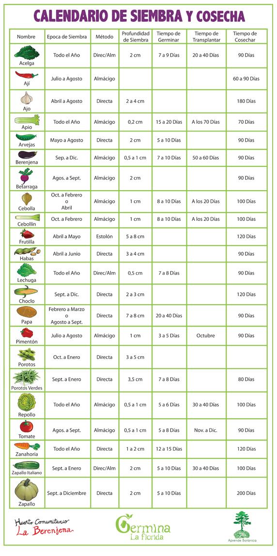 Calendario de Siembra y Cosecha