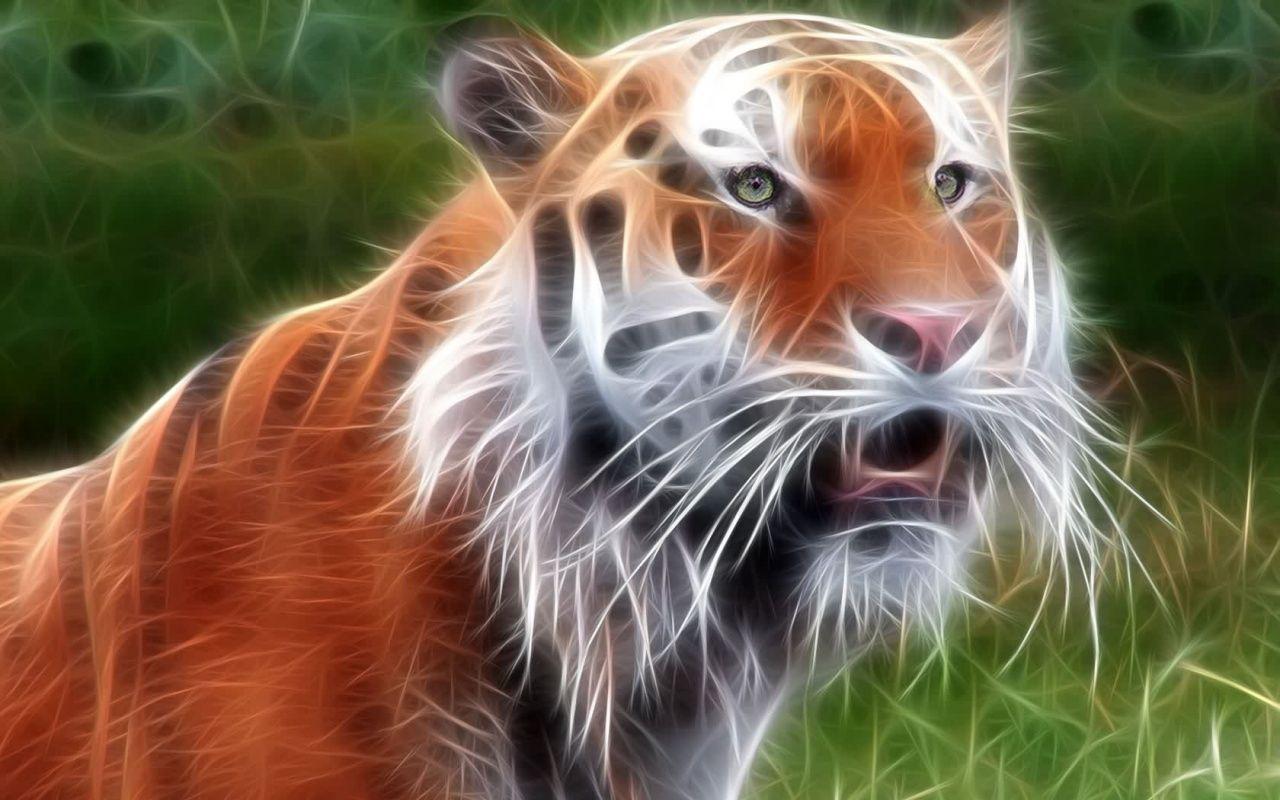 3d Tiger Wallpaper Animal Wallpaper Tiger Wallpaper Animals
