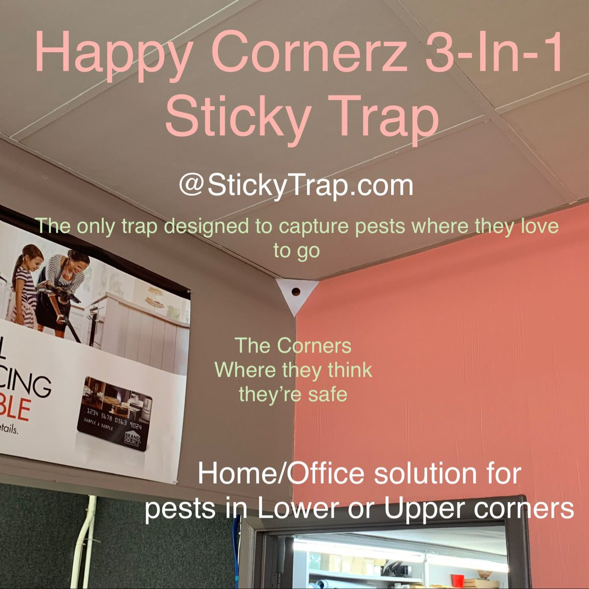 Home/Office DIY Sticky Traps for Roaches, Insects, Spiders