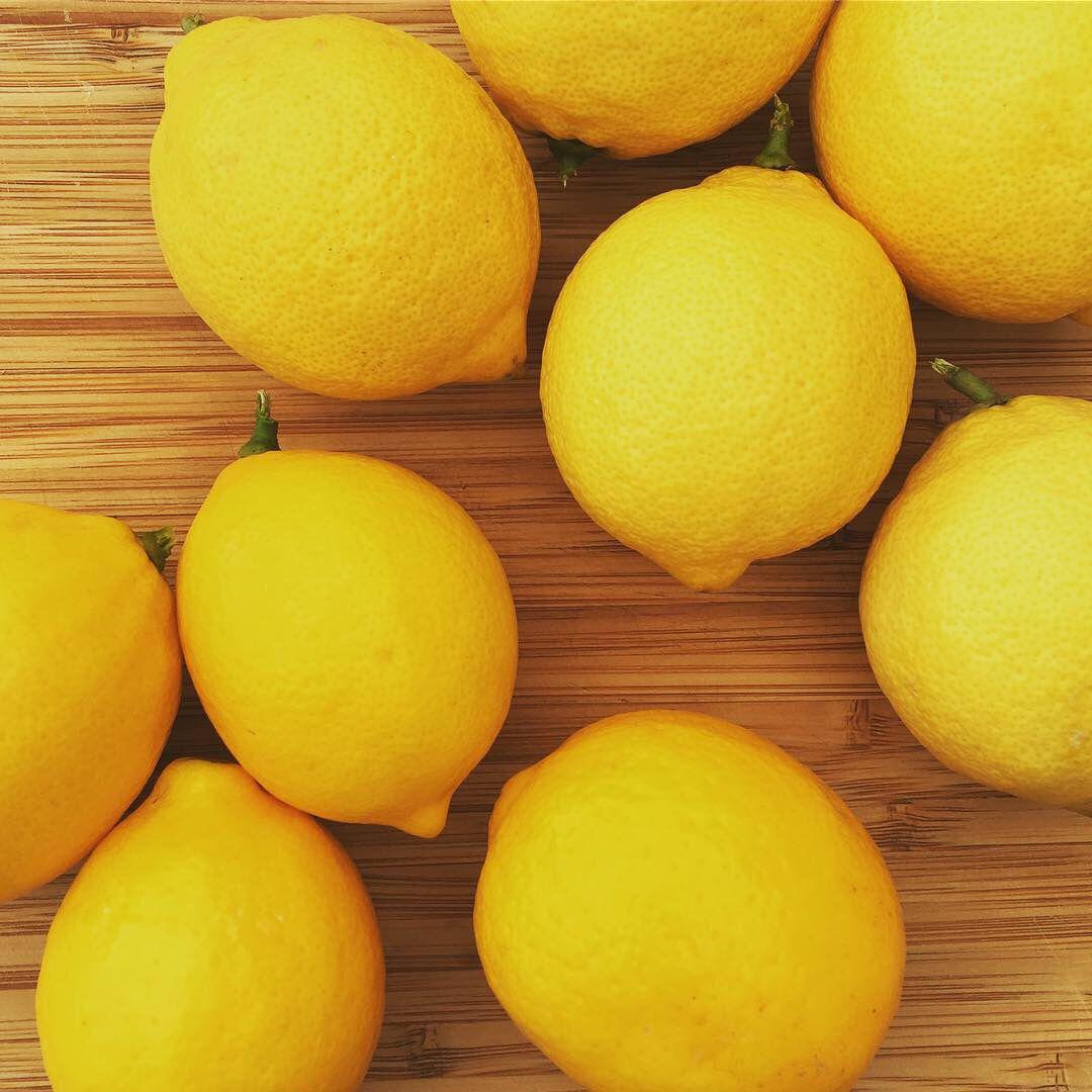 Meyer Lemons Vs Eureka Lemons Citrus Trees Eureka Lemon Eureka Lemon Tree