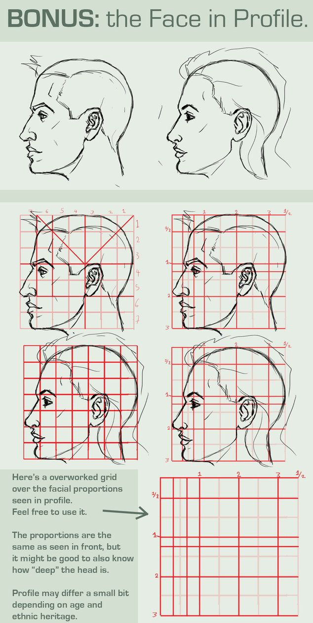 Character Design Profile : Face proportions profile view by bittersweetdisease