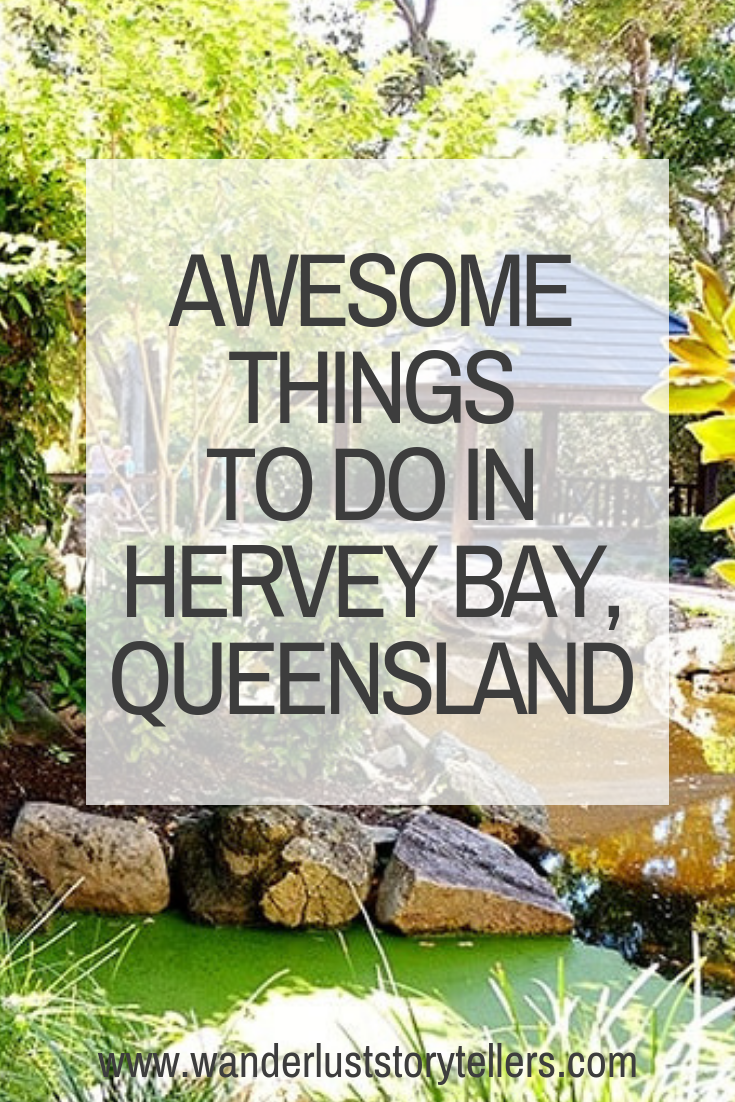 11 Awesome Things To Do In Hervey Bay Queensland Hervey Bay Things To Do Australia Vacation