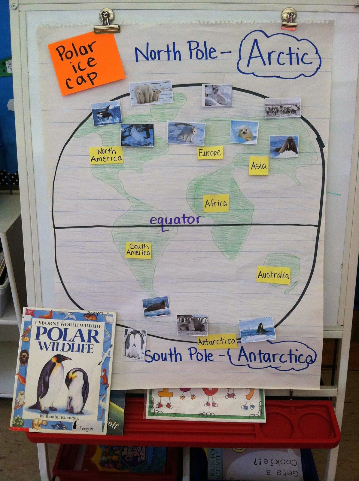 A Great Way To Organize Our Learning About North And South