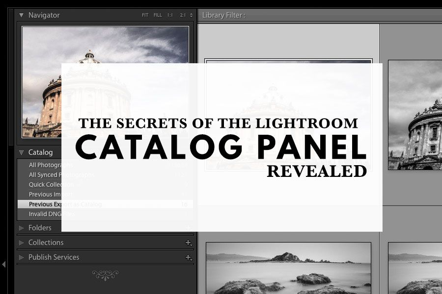 Lightroom catalog vs collection