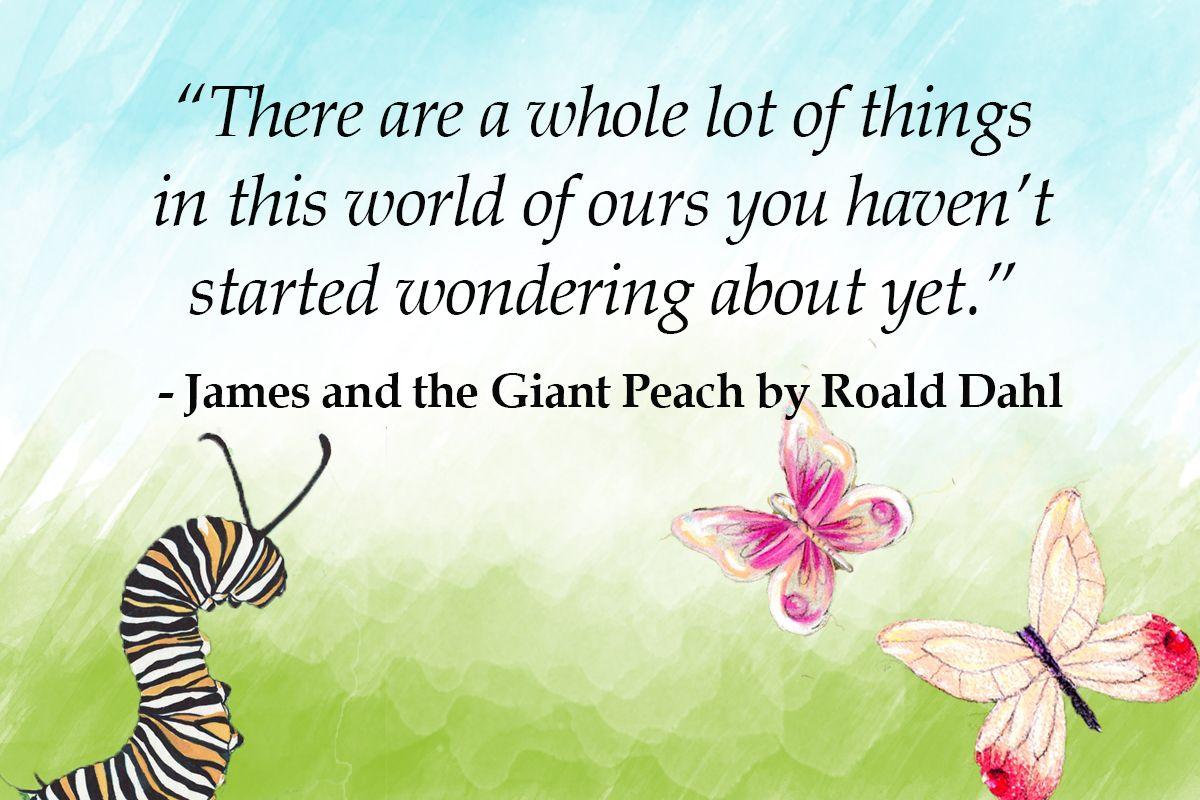 76+ Roald Dahl Quotes (Pictures)   Imagine Forest