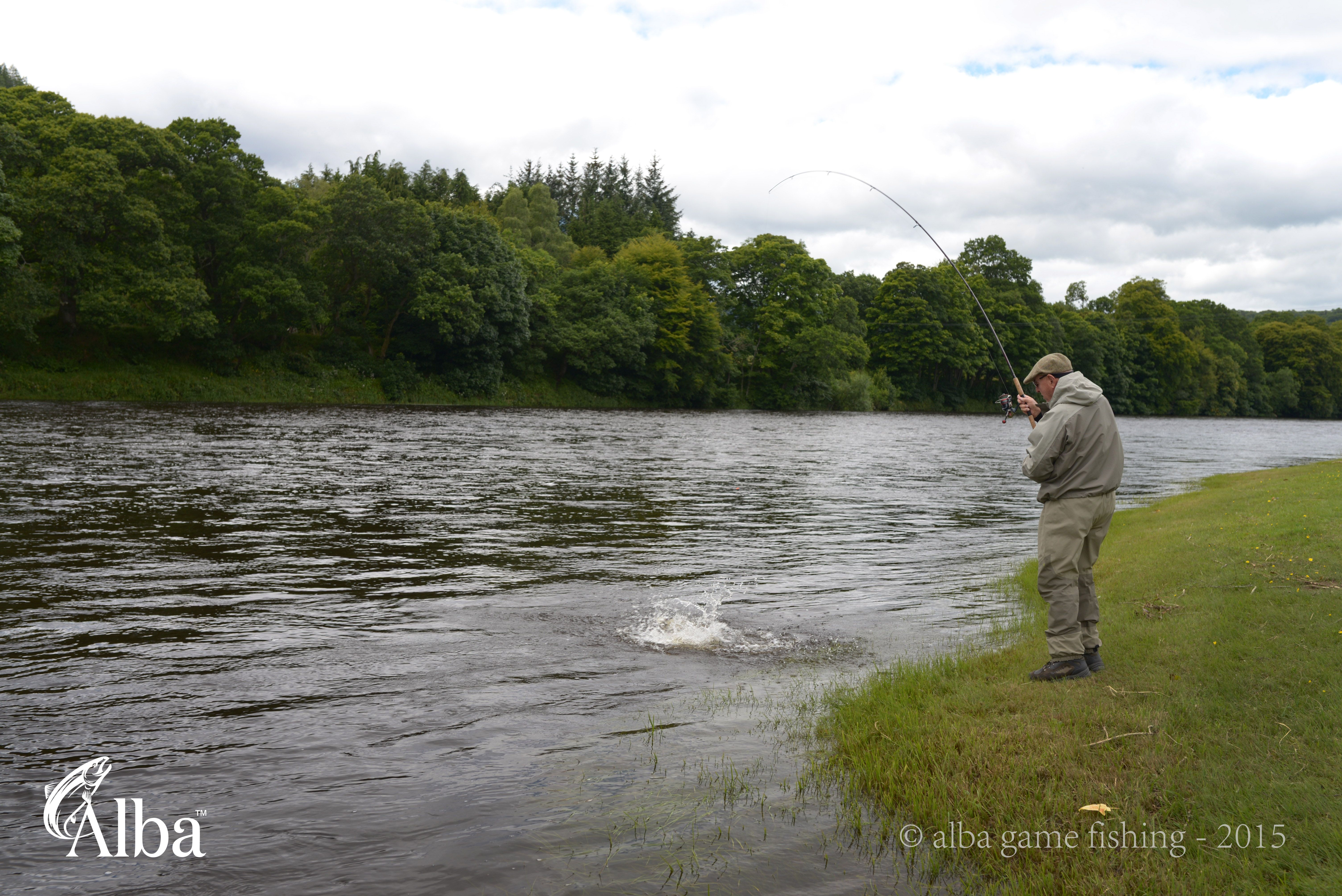 Richard From The Taxi Photo On This Board Into One Of The 4 Salmon Hooked On The River Tay Near Dunkeld Guided Sal Salmon Fishing Fishing Vacation Travel Fun