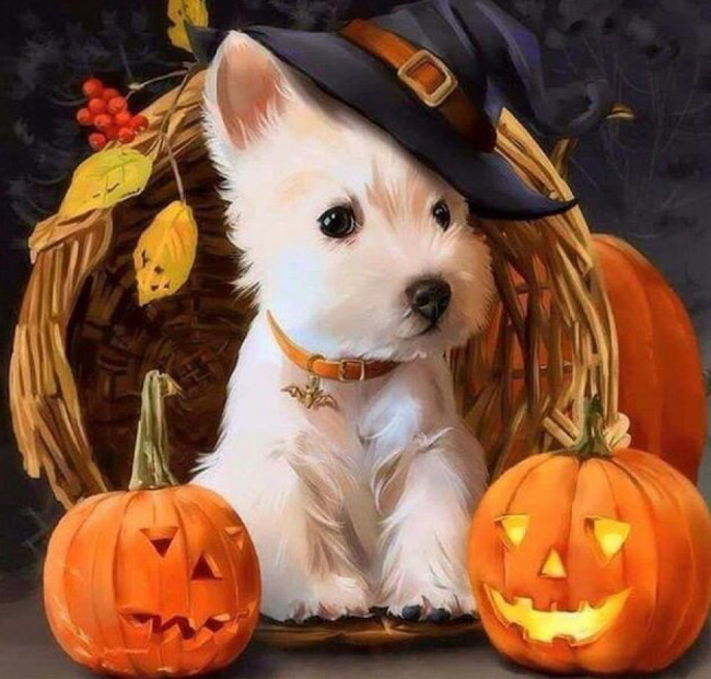 Cute Happy Halloween Puppy Pictures 2018 For Wallpaper Hd 1080p Halloween2018 Halloween Halloweencostumes Halloween Puppy Dog Halloween Halloween Animals