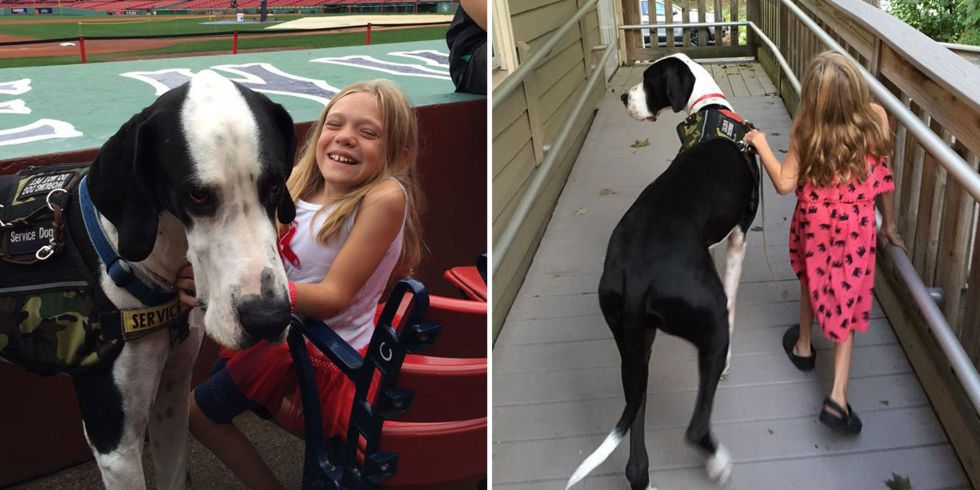 11 Year Old With Rare Disorder Gets Helping Paw From Her Great