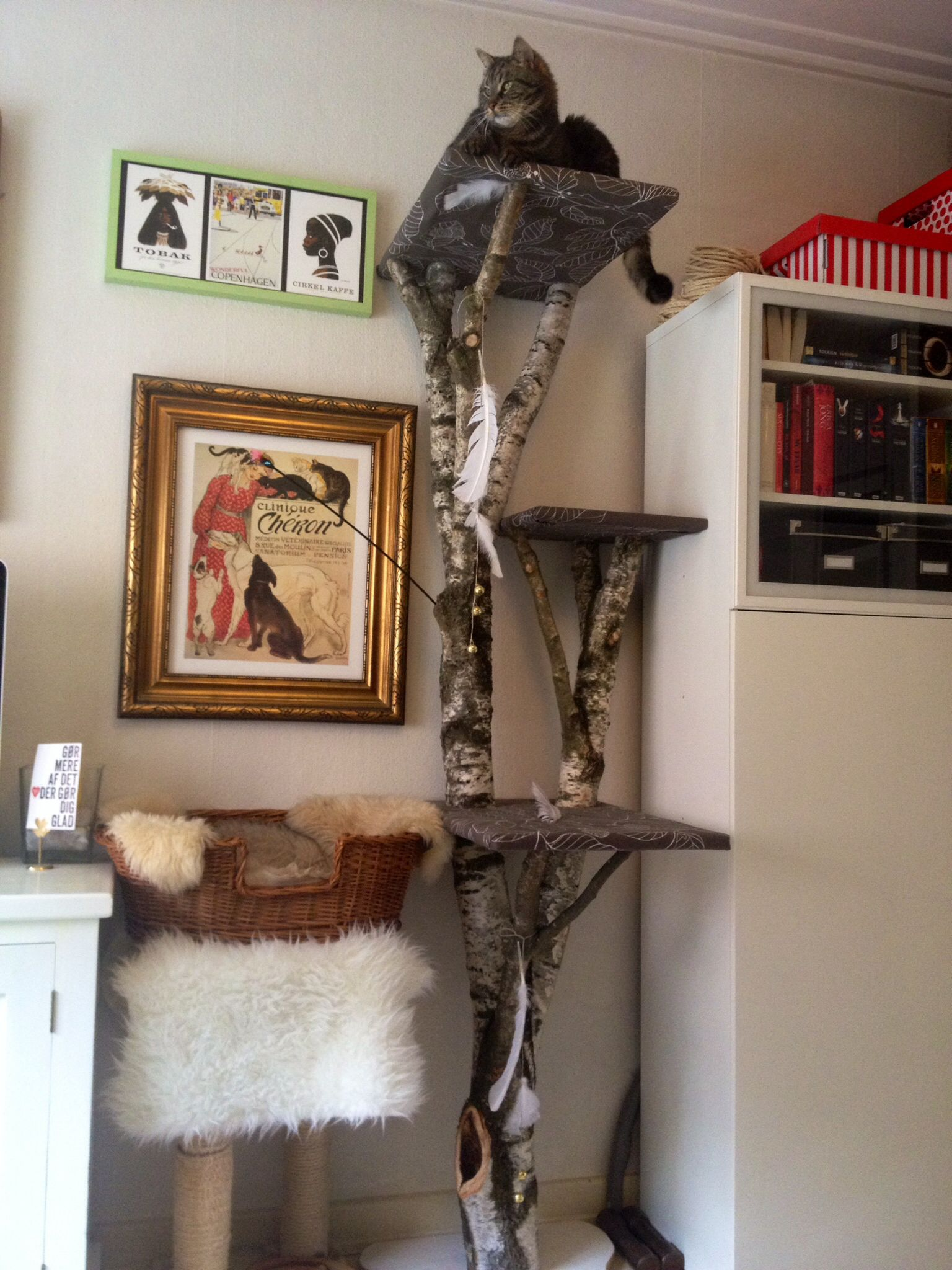 my homemade cat tree turned out so beautiful and balte loves it