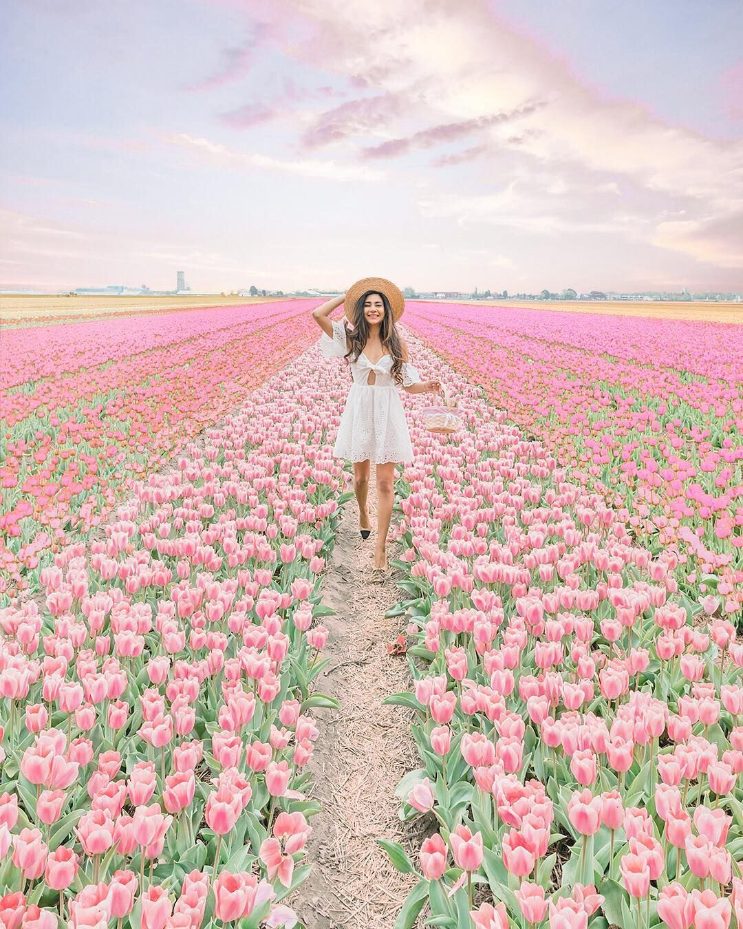 Cassiesamji One Of The Most Mesmerising Experiences In My Entire Life This Has Been A Dream Of Mine For A Few Years Now T Tulip Fields Tulips Flower Field