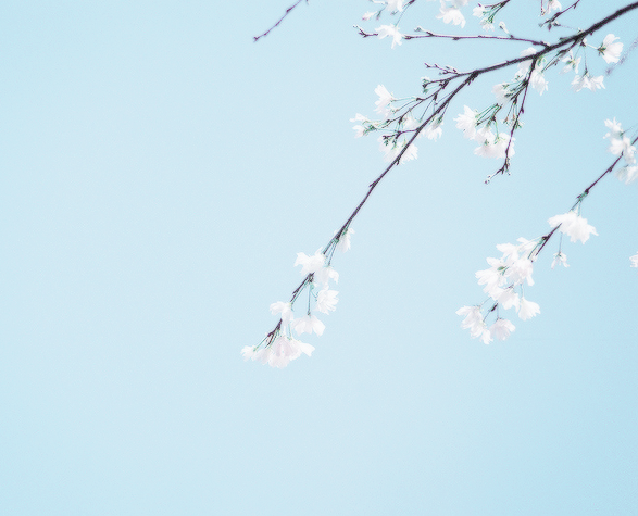 Light Blue Grey Aesthetic