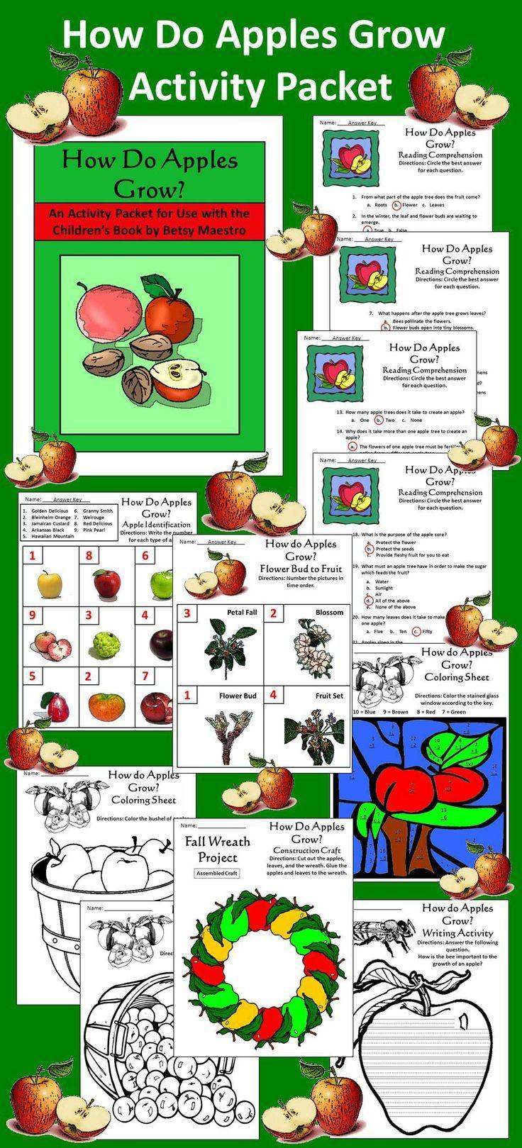 Apples Activities How Do Apples Grow Science Activity