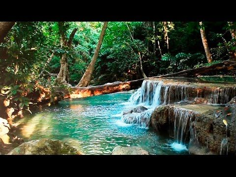 10+ Videos of Nature Sounds for Relaxation | WATERFALLS | Meditation