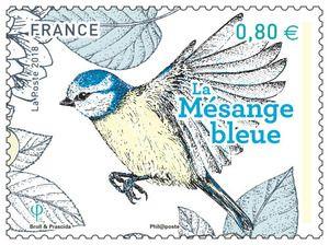 Timbre Les Oiseaux De Nos Jardins La Mesange Mesange Bleue