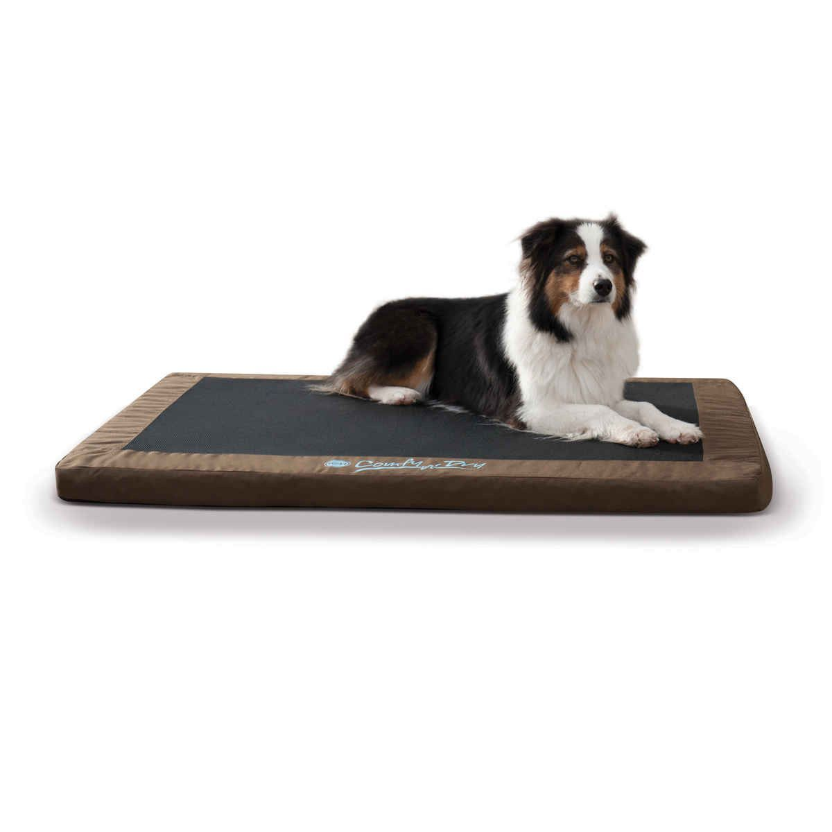 kh pet products comfy n' dry indooroutdoor pet bed large  - kh pet products comfy n' dry indooroutdoor pet bed large chocolate