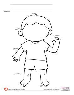 Fe8c2adf04f85f19c3ac2ae684e4a434 spanish worksheets printable body parts printable worksheet for kindergarten ccuart Choice Image