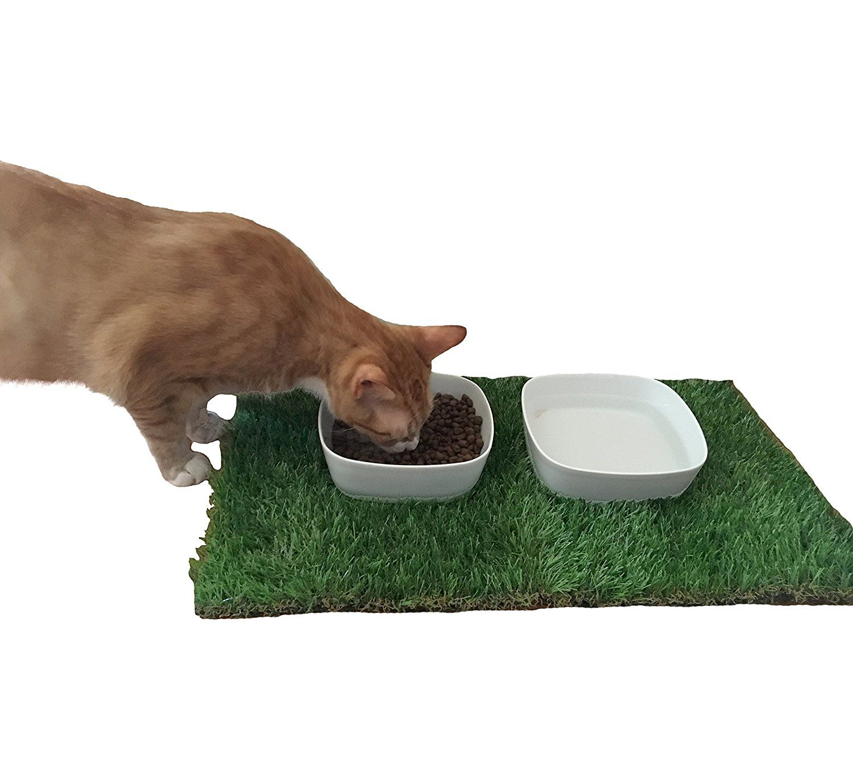 x silicone mats brown hygienic mat safe p feeding picture s premium dishwasher of fda dog