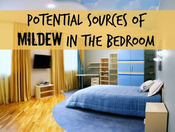 Potential Sources For Mildew Odor In A Bedroom Musty Smell In