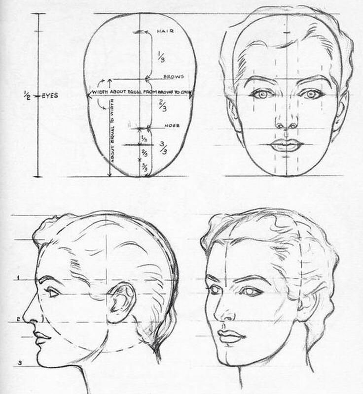 Female Face Proportion Face Drawing Drawing Heads Drawings