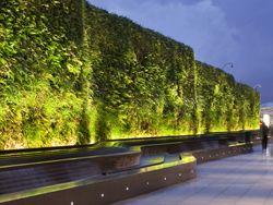 Linear Uplighter Green Vegetation Wall Light Exterior