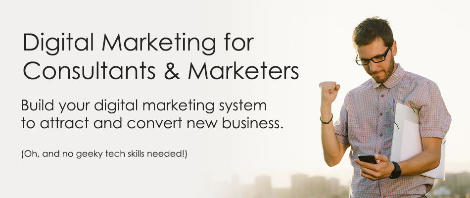 Digital Marketing Consultant For Helping Online Business Career