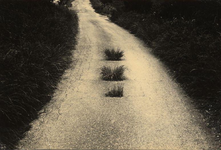 """last-picture-show: """"Masao Yamamoto, A Box of Ku """""""