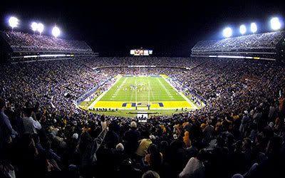 Best Seats In The House Tiger Stadium Lsu Lsu Tiger Stadium