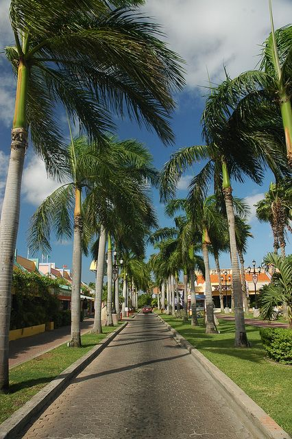 Tropical Garden Entrance
