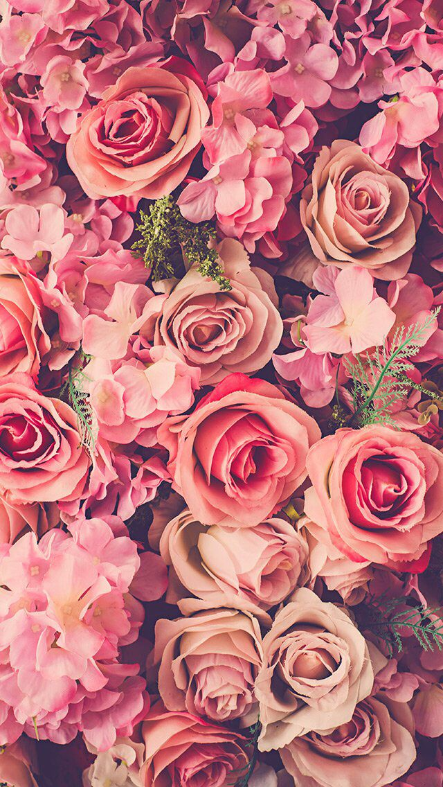 Vintage Floral Iphone Wallpaper Collection Iphone 7 Plus