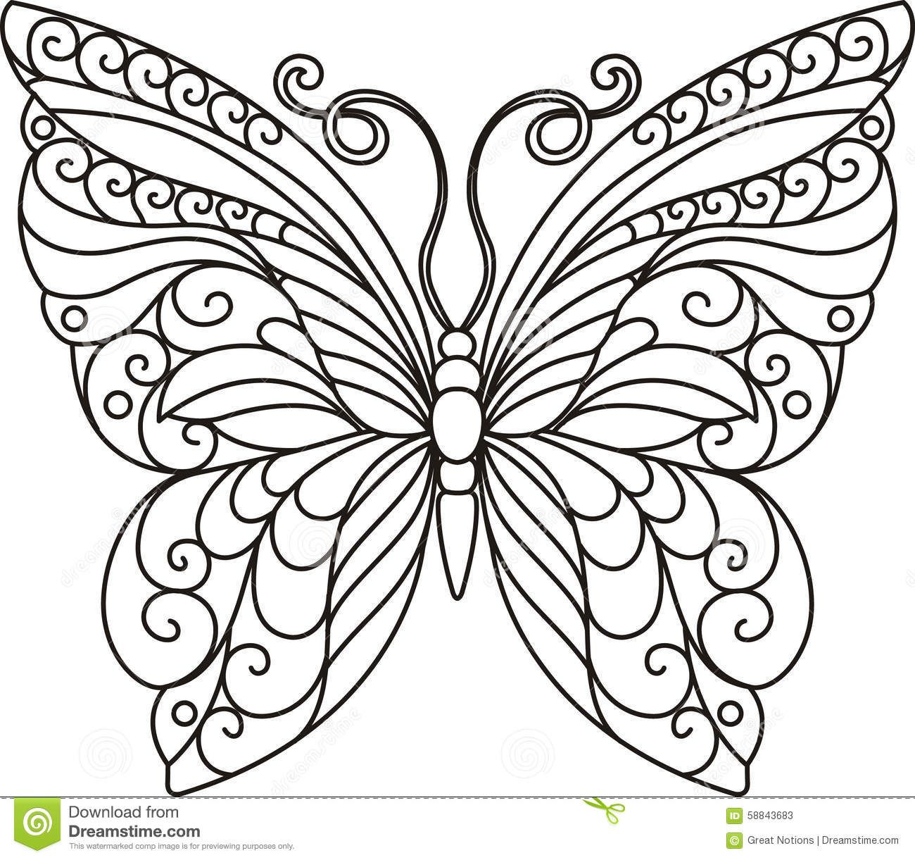 Stock Photos BUTTERFLY OUTLINE