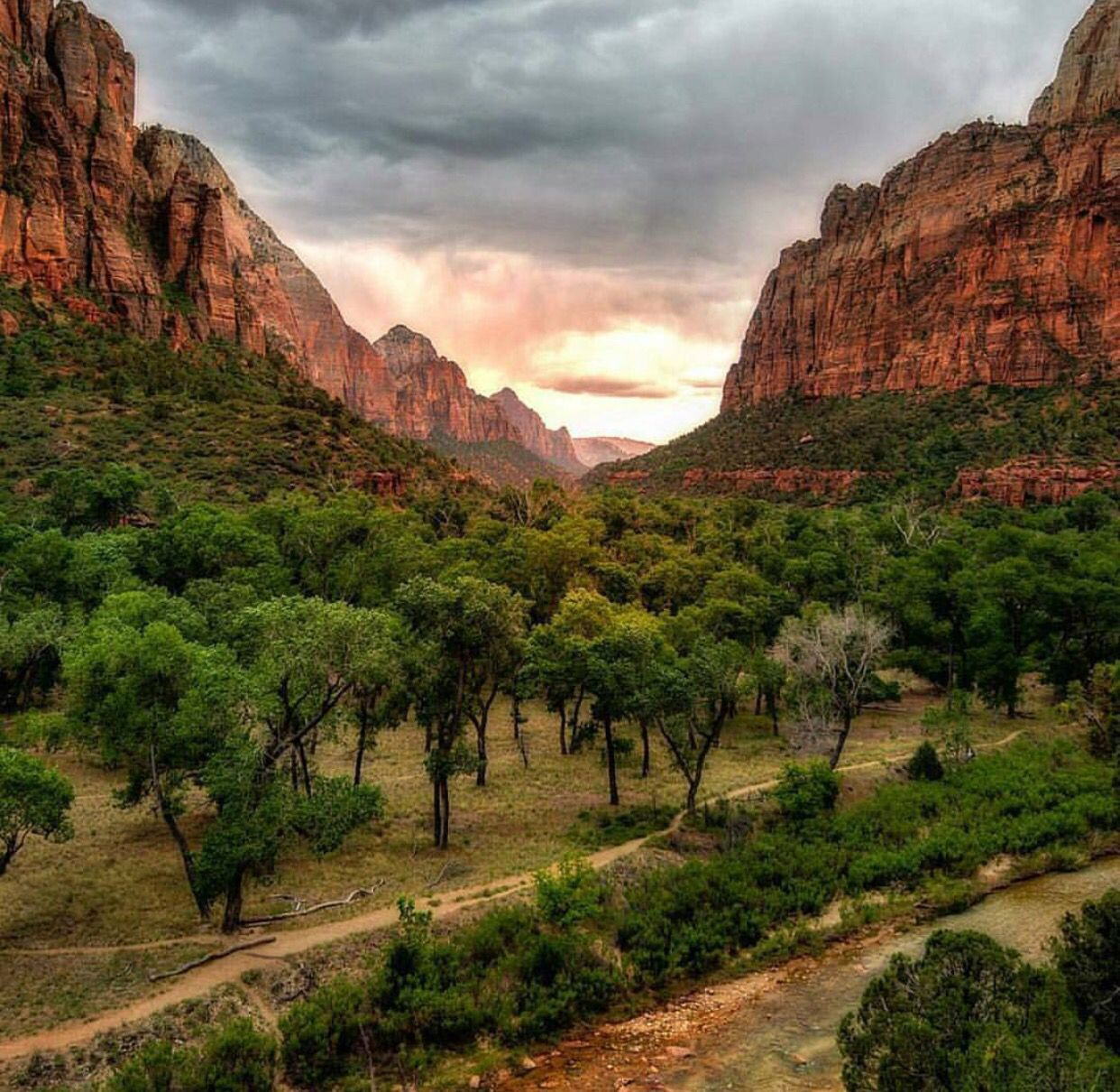 The mountains are calling...... Zion national park