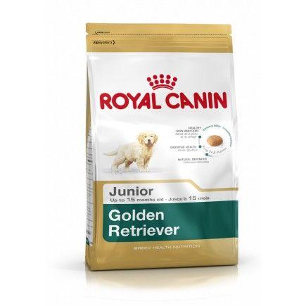 500 Internal Server Error Royal Canin Dog Food Dog Food Recipes Royal Canin
