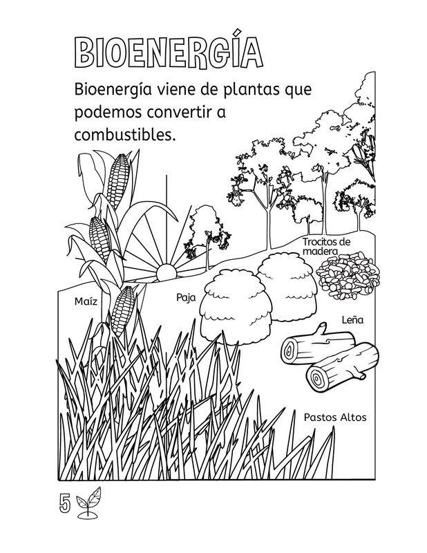 Picture   SOCIAIS E NATURAIS   Pinterest   Ciencia, Ciencia física y ...