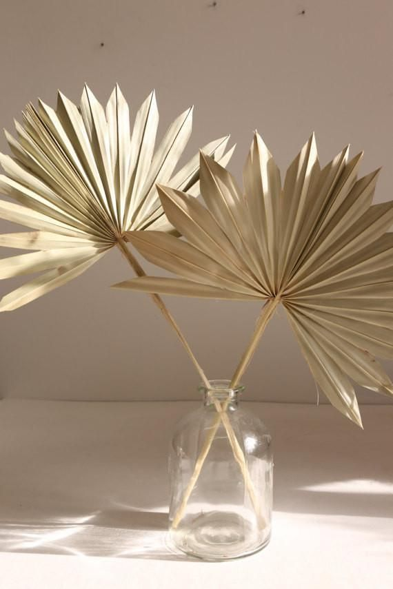 Sun Spears  Palm Fans for natural decorations  Natural Floral Arrangements  is part of Dried flower arrangements - Wonderful preserved natural sun spear palm spray  These are great for interiors decoration, floral arrangements and natural craft  They look amazing in flower arrangements and wedding decor  Each stem is approx 4050cm long  We stock a wide range of natural floral supplies  check our other items! Questions and custom orders are always welcome, Many thanks, Lost Land Interiors