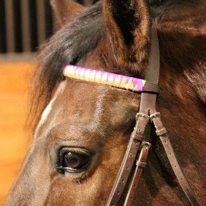 Looking for that creative colorful do it yourself gift for your looking for that creative colorful do it yourself gift for your horse friends learn how to make ribbon browbands for holiday gifts this year on solutioingenieria Gallery