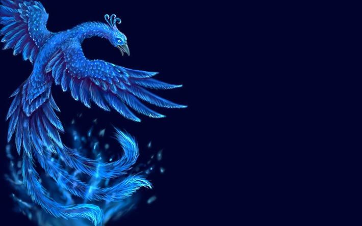 The phoenix is a mythological sacred bird that has been adored for ...