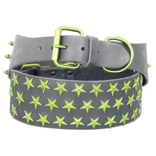 leather black with corona lime star dog collar: BitchNewYork.com - Provides Designer Dog Products such as Collars, Clothes, Beds, and Crates
