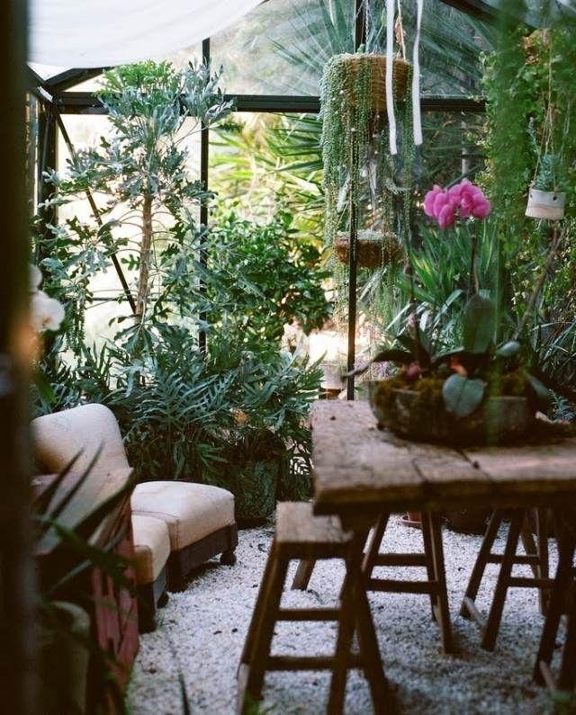 wintergarten ideen pflanzen orchidee holz tisch | home & garden, Terrassen ideen