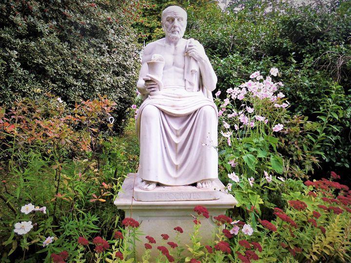 Hippocrates in the gardens art fine art america photo art
