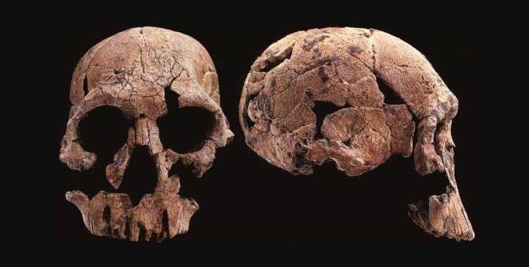 Skull 1470 dating