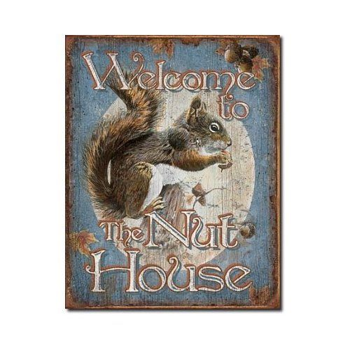 Amazon Com Welcome To The Nut House Squirrels Distressed Retro Vintage Tin Sign Home Kitchen Squirrel Squirrel Art