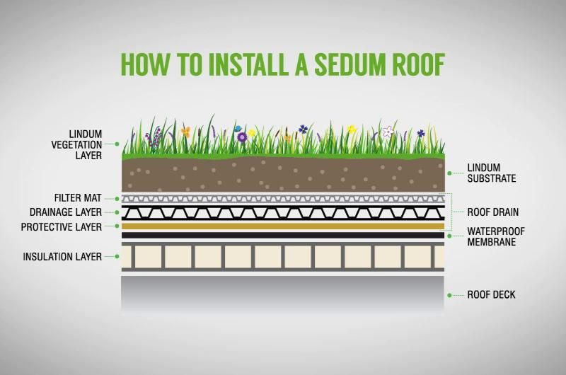 How To Install A Sedum Roof Sedum Roof Roof Green Roof