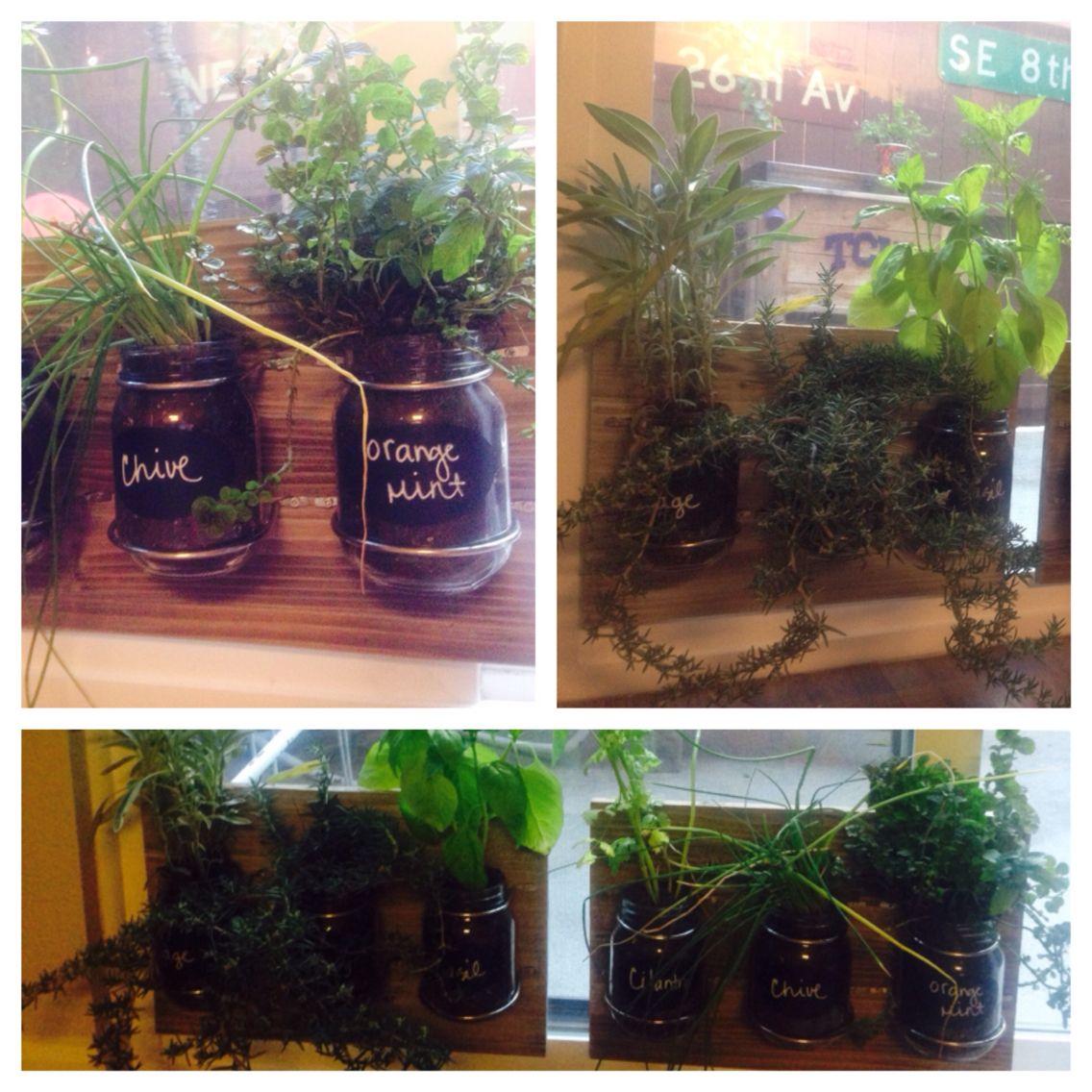 Indoor herb garden on a sliding glass door for plenty of light jars indoor herb garden on a sliding glass door for plenty of light jars board workwithnaturefo