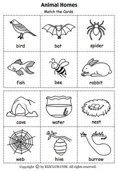 Animal Habitats Printables Set Of Cards For Matching Animals
