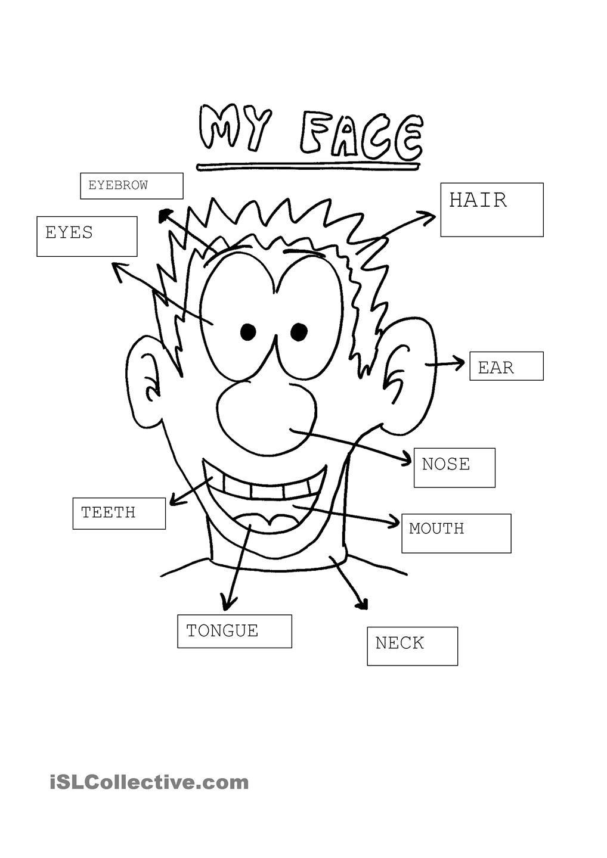 My face | Partes del cuerpo preescolar