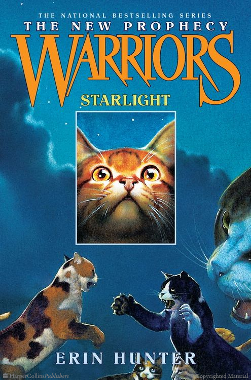 Warriors The New Prophecy book 4 Starlight Warrior cats