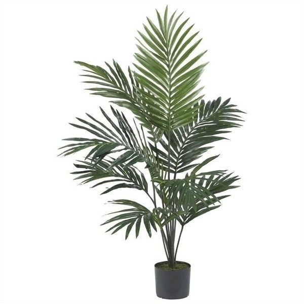 Nearly Natural Kentia Palm Silk Tree Liked On Polyvore Featuring Home Decor Floral Plants Flowers Fillers