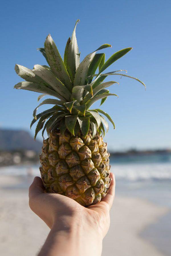 Lust auf Urlaub und Ananas